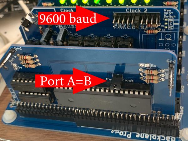 IMG 8104